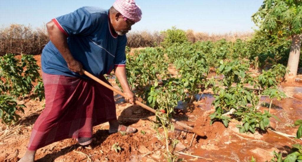 soil care